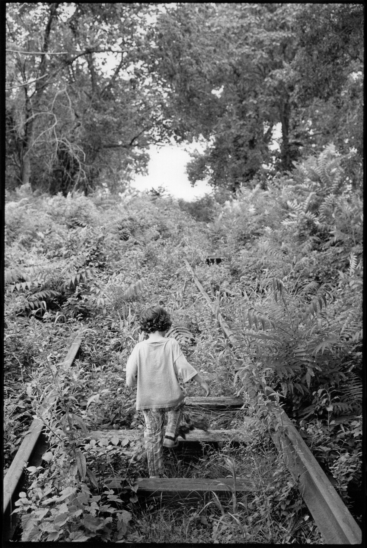 Chuck Fishman, 4-year-old boy walking along deserted railroad tracks overgrown with foliage, Bearsville, New York, August 1994 11x14""